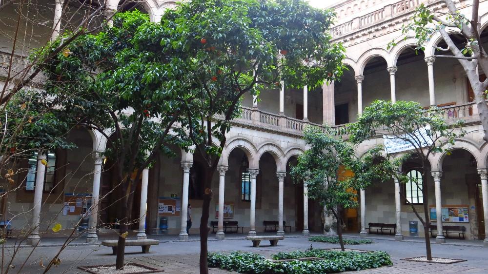 Universidad Barcelona.